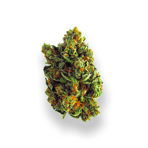 Weed Delivery Edmonton