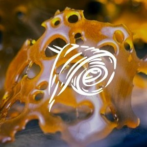 Buy Hash and Shatter In Barrie