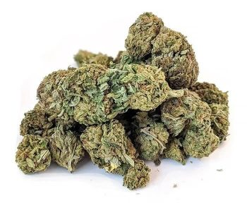 Quadzilla - Weed Delivery Guelph - Kush