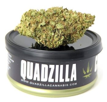 Weed Delivery Georgetown- Quadzilla Cannabis